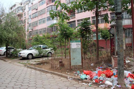 聊城柳园小区北区:没有物业管